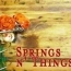 springsnthings
