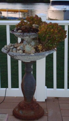 This old iron fountain has been turned into a two tiered succulent garden on our back deck.