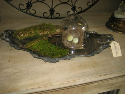 A wonderful vintage disgarded oval silver dish turned display.  A real birds nest under the cloche is the hi-lite of this piece.