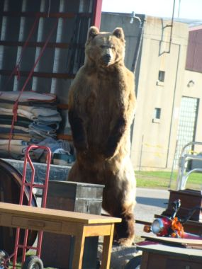 Yep - a grizzly bear in the heart of Ohio...welcoming anxious junkers to the Springfield Extravaganza - gotta love it.  I heard someone say this guy was selling for $4,000.00 (I didnt see him later in the day...so, either someone paid up...or he escaped back to the woods he came from...).