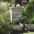 Abandoned Bee Skep as focal point in herb garden