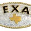 before: gag!!! what a piece of JUNK! ;)this is almost exactly what it looked like before, but it had a plain border and different background engraving. i loved the shape, simple detailing and the TEXAS (i cant ever let these okies forget im from texas.  im a pill like that!) of it, but the bling/flashy-cowboy factor was WAY too high for me.  i wanted funky, not farmy!  i knew right away what i wanted to do with it:  finally get some practice with the paint and glaze technique i learned at http://allthingsthrifty.com/.
