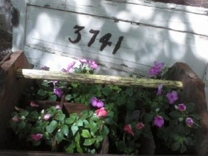 One of Grandpa Smiths tool boxes he made.   I repurposed it and gave it a new life as a home for petunias.  Its next to a screen door (complete with the squeak!) that inspired my user name, blog, and whatnot shoppe!
