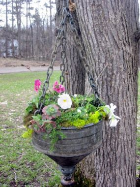 I like to hang planters from my trees in the front yard, but it would look lovely on a front porch as well. I am going to make two more and hang in a grouping of three.