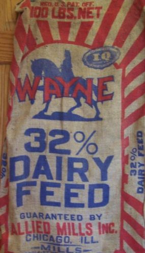 One of the two original feed sacks.  Bright graphics!