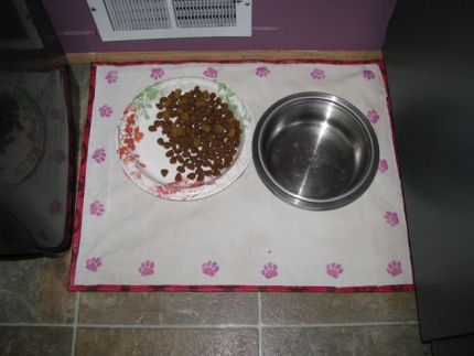 A new placemat for my dog, Emma. Two layers of canvas and a bottom layer of  old plastic tablecloth to protect the floor.