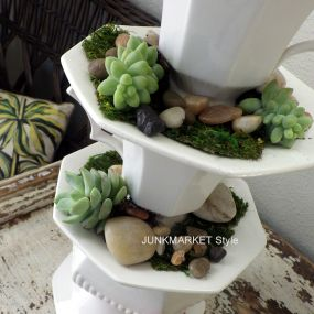 I put a small amount of soil in the saucers, planted the succulents, and added rocks and moss.