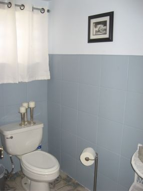 I painted the tile walls a blue/slate grey and the top part a light blue/grey....to start